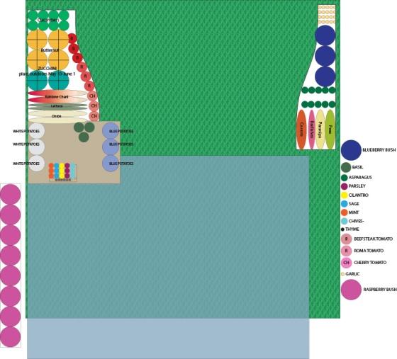 garden layout 2013